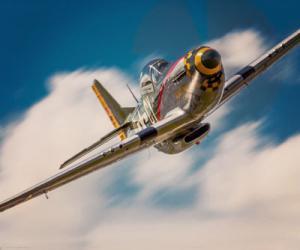 "P-51 ""Gunfighter"""